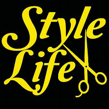 Stylin Vinyl Car Decal Cosmetology Hair By Lilbitolove On Zibbet