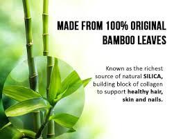 Bamboo Leaf Liquid Extract - 12oz Bottle - Kosher - Hair & Skin ...