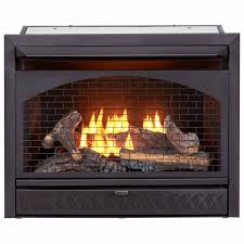 propane natural gas fireplace insert