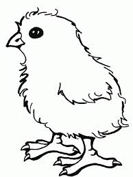 imágenes de pollos para colorear