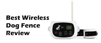 Best Wireless Dog Fence Review 2020 The Best Dog Fence Technology
