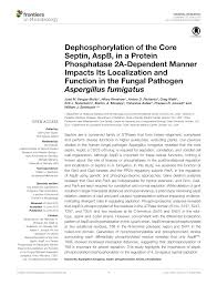 PDF) Dephosphorylation of the Core Septin, AspB, in a Protein Phosphatase  2A-Dependent Manner Impacts Its Localization and Function in the Fungal  Pathogen Aspergillus fumigatus
