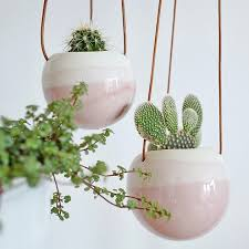 awesome decoration wall hanging plant