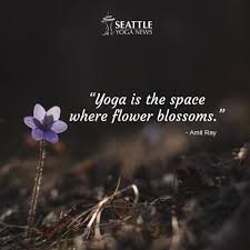 inspirational yoga quotes ready for social media sharing