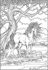 Pin Van Marielle Hoogeveen Van Winden Op Paarden Eenhoorn
