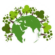 Environment And Eco Friendly Car Stickers And Decals