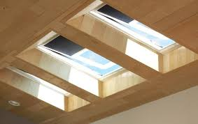 Sustainable Living Through Skylights