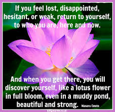 inspirational quotes about lotus com