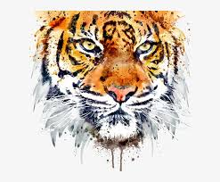 free png tiger face png