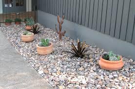 rock and cactus garden ideas photograph