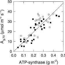 rate of a g 70 versus atp synthase