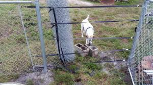 Pull A Fence Without A Fence Puller Or Come Along Fence Farm Fence Diy Fence