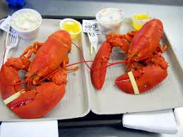 15 Best New England Lobster Shacks ...
