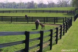 Economical Visually Appealing Fencing Options Chronicle Forums