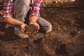 what does loam mean to a gardener