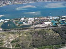 sea world gold coast australia