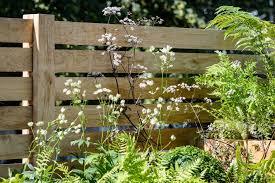 11 Of The Best Garden Fence Ideas Bbc Gardeners World Magazine