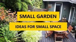 small garden ideas for small space