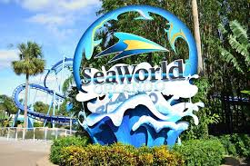 seaworld orlando vacation planning guide