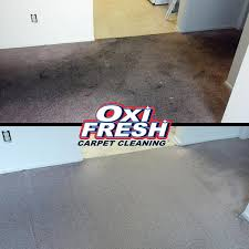 carpet cleaning before and after oxi