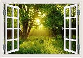 Amazon Com Removable Wall Decals Of Tree 3d Window View Sticker Sunshine Through The Green Forest Scenery Vinyl Prints Poster Wall Decor Mural Art For Living Room 24 X36 Home Kitchen