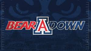 arizona wildcats id 1600x900
