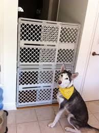 Any Indoor Pet Gate Tall Enough For A Husky Diy Dog Gate Pet Gate Dog Barrier