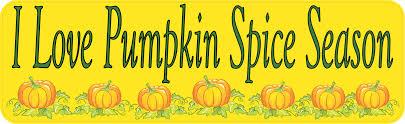 10in X 3in Pumpkin Spice Bumper Sticker Vinyl Autumn Car Decal Stickers Stickertalk