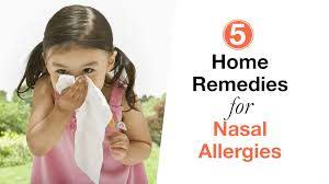 8 home remes for nasal allergies