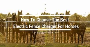 How To Choose The Best Electric Fence Charger For Horses