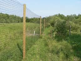 Heavy Duty Treed Lot Or Wooden Post Perimeter Deer Fence Kit 200 X7 5 60mx2 3m