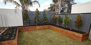 Great Ideas For Outdoor Privacy Bunnings Warehouse