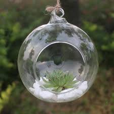 clear round hanging glass vase bottle