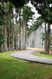 garden travel guide to sri lanka