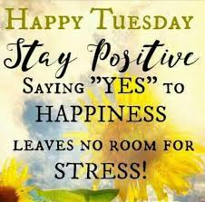 happy tuesday images good morning tuesday quotes messages wishes