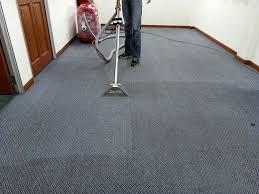 carpet cleaning vs diy carpet cleaner