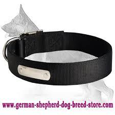 weather nylon dog collar with name tag