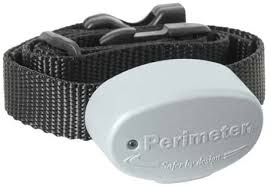 Amazon Com New Dog Fence Collar For Invisible Fence Brand Pet Fencing Systems Better Than The R21 Invisible Fence System Frequency 10k High By Perimeter Technologies Wireless Pet Fence