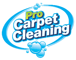 pro carpet cleaners fort lauderdale