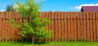 Trees And Fences Educaloi