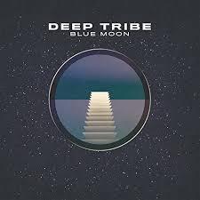 Blue Moon (Aaron Jacobs Remix) by Deep Tribe, Aaron Jacobs on Amazon Music  - Amazon.com