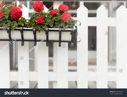 Flower Box On White Wooden Fence Stock Photo Edit Now 666921424