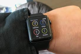 apple watch to budget calorie intake