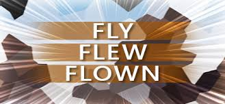 Image result for flew