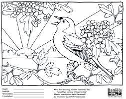 Kleurplaat Week Van De Vogels Tuincentrum Daniels