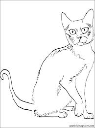 Korat Kat Kleurplaat Gratis Kleurplaten