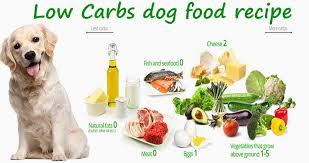 dog food recipe is a low carb t