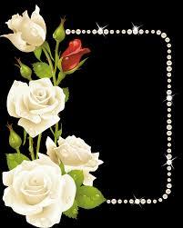 صفقات حصرية أفضل موقع إصدار جديد صور اجمل زهور في العالم