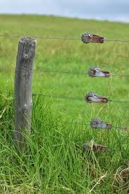 Electric Fence Stock Photos And Images 123rf