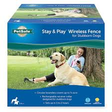 Stay Play Wireless Fence Stubborn Dog